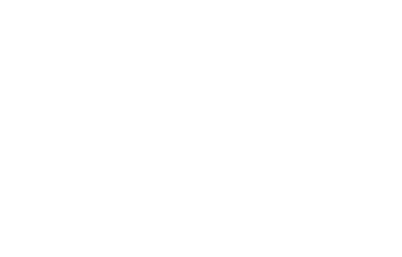 ZF_02